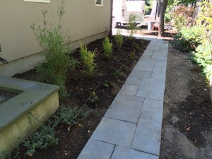 Bluestone Walkway Plantings | Landscape Design