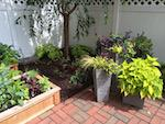 Project: Wellesley Hills Courtyard Gardens