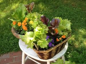 Catherine Volic | Edible Container Garden | Brown Baskets June