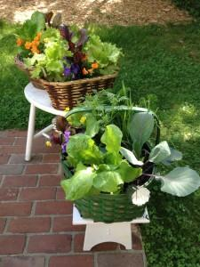Catherine Volic | Edible Container Garden | Brown and Green Baskets June