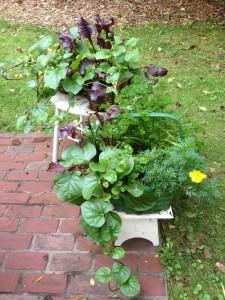 Metro West | Edible Container Garden | Brown and Green Baskets September