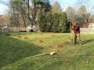 Frank Hamm | Vegetable Gardening in Metro West Boston | Digging Holes