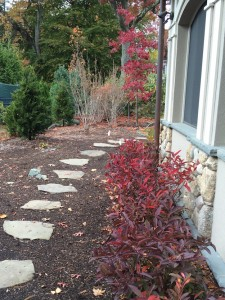Completed Flagstone Pathway